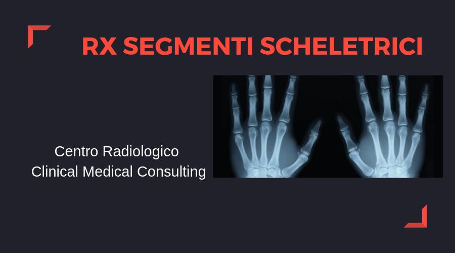 radiografia-segmenti-scheletrici.png